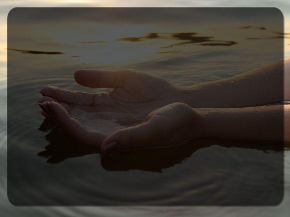 Bathed-Light-Blank.jpg