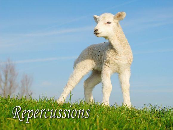 Repercussions-Lamb-Blank.jpg