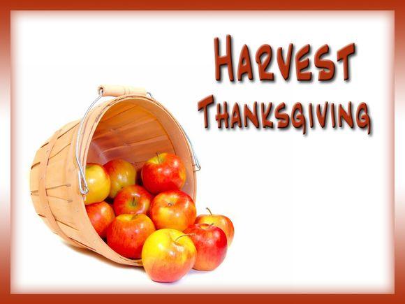 Harvest-Blank.jpg