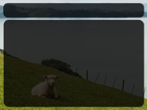 sheep-lake-blank.jpg