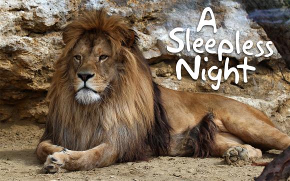 A-Sleepless-Night-Reading.jpg
