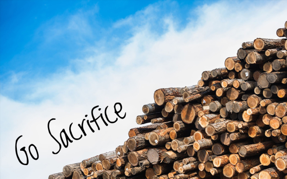 Go-Sacrifice-Reading.jpg